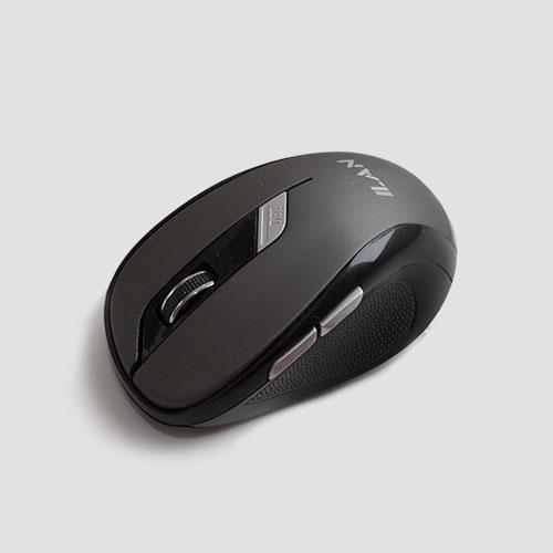 Mouse FR-01 1